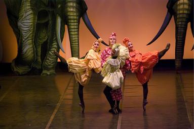 Photographie : Carnaval des Animaux (Le). 2009/2010, Opéra-Théâtre de Metz Métropole |