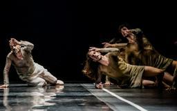 Ballet National de Marseille |