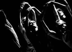 Benjamin Millepied et le L.A. Dance Project : I Fall, I Flow, I Melt  |